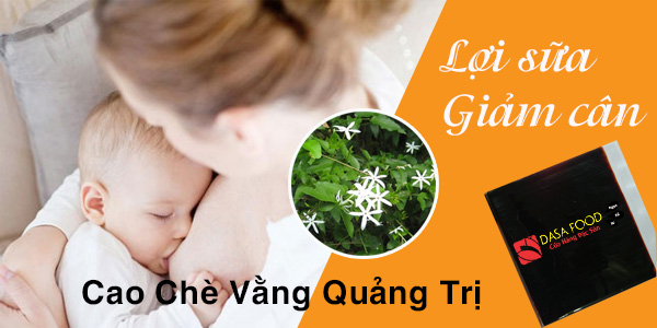 banner-cao-che-vang-home