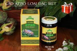 Cao atiso Ngọc Duy